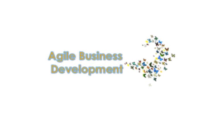 Our Agile Business Development
